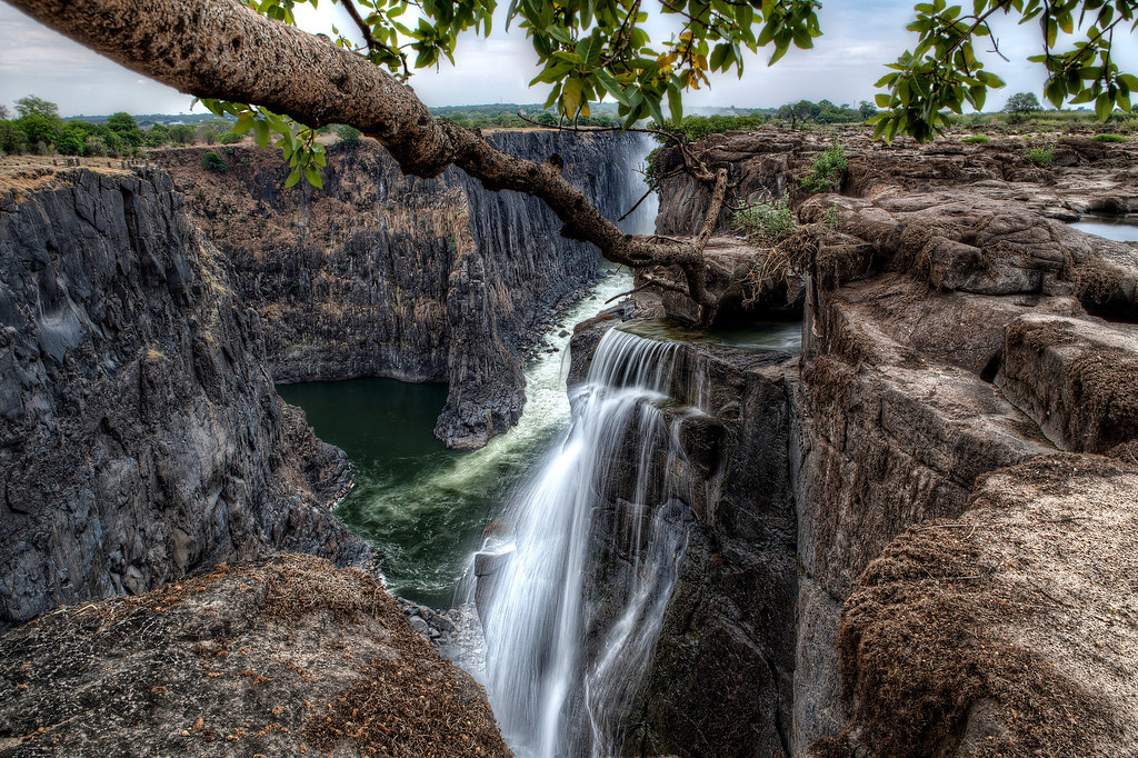 View of Victoria Falls and Batoka Gorge in Zambia with giant tree branch reaching towards waterfall cascading down to green pool of water.