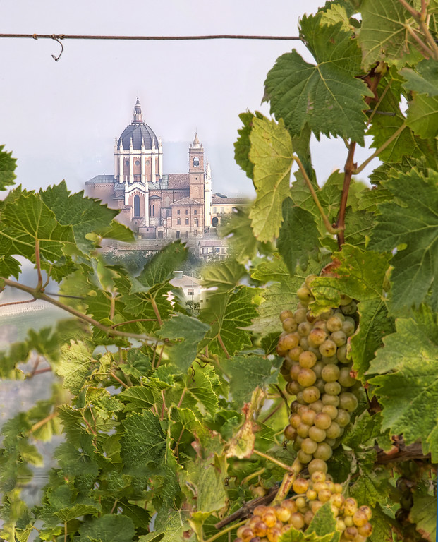 Grapes in front of an Italian dome (duomo) in Piedmont Italy, HDR focus stacked image.