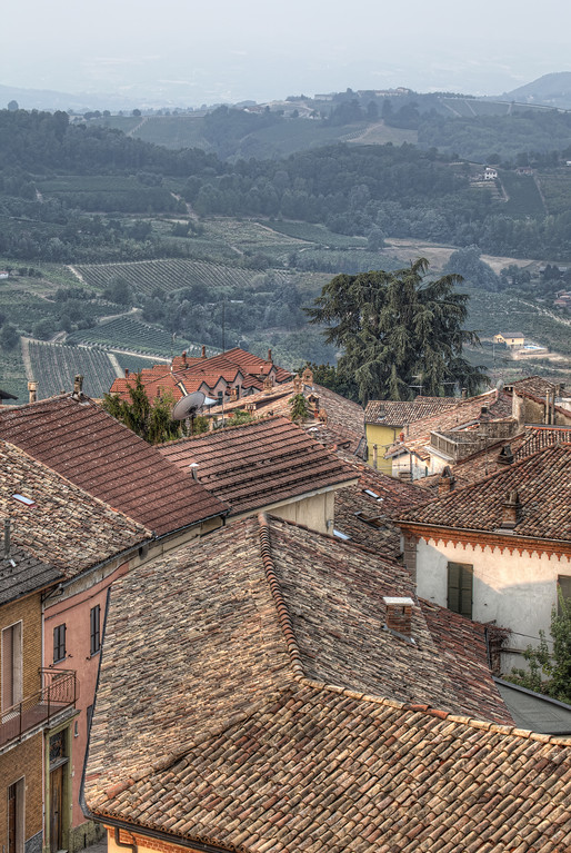 Tiled roofs in front of vineyards on rolling hills in Alice Bel Colle, Italy