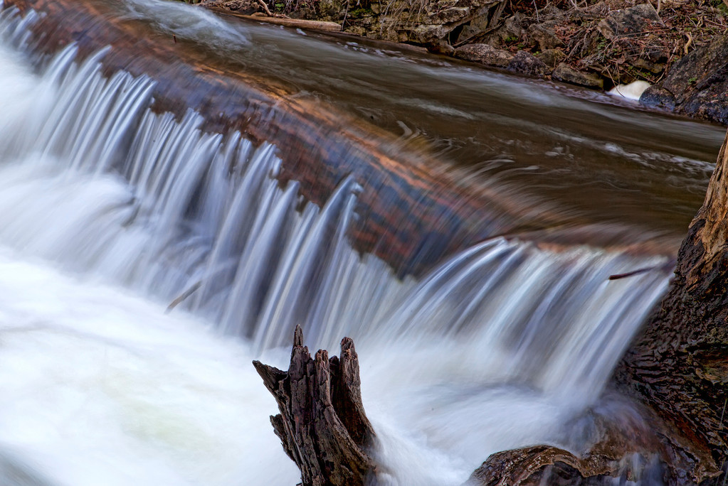 Water rushing over log that seemed to be almost glowing beneath the frothing foam in Ontario, Canada.