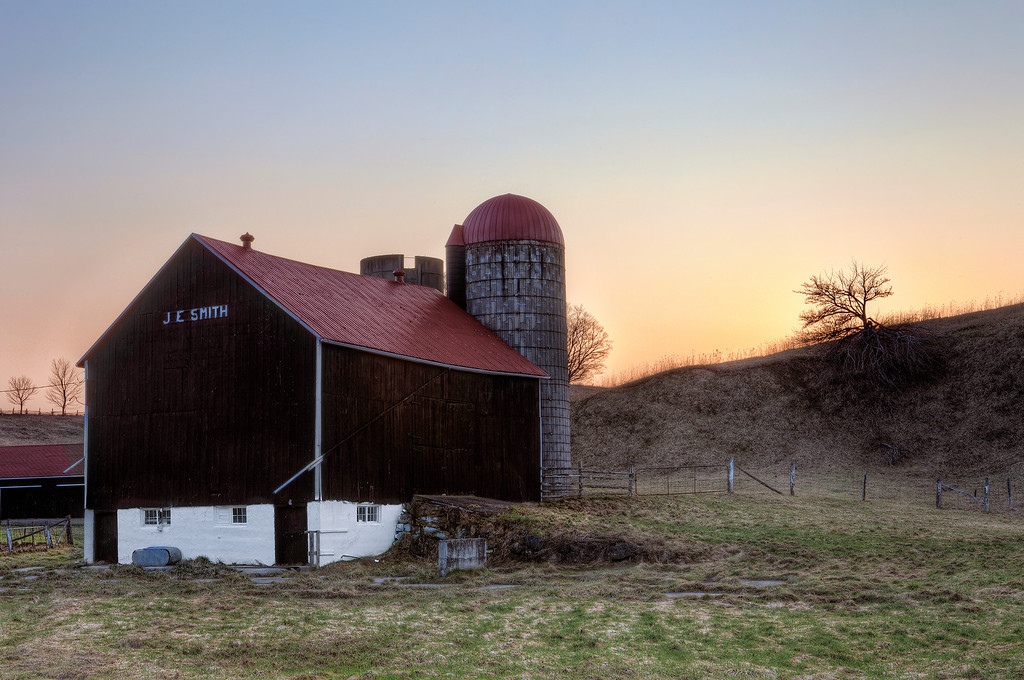Barn and silo with red roofs at bottom of hill with tree at crest in Bruce County, Ontario