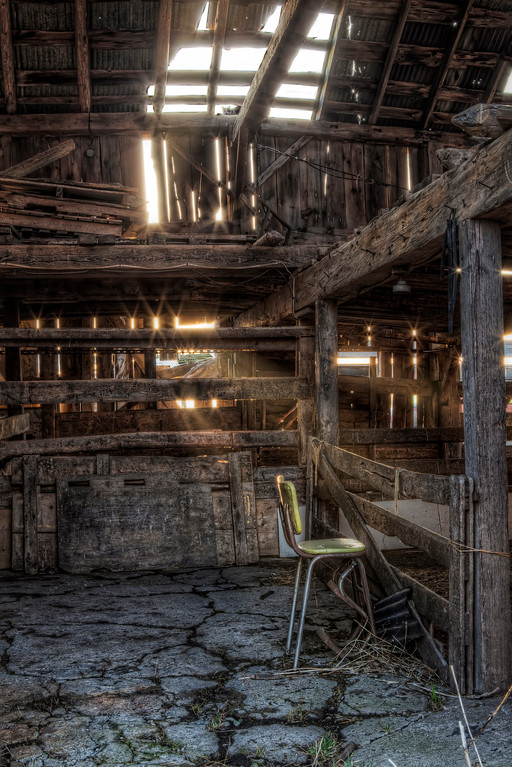 Inside of dilapidated wooden barn with hole in roof where cat perches with sunshine pouring in through all the holes in Niagara, Ontario.