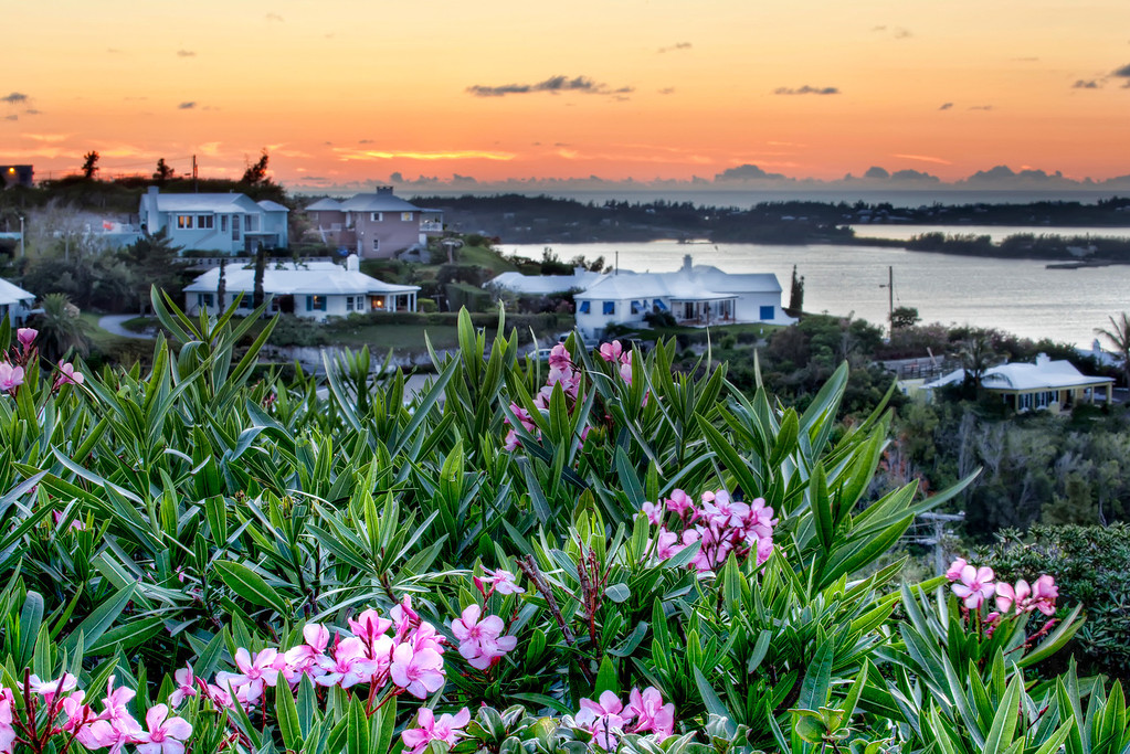 View of pink oleander, white roofed houses, ocean dotted with islands under an orange sunset in Bermuda